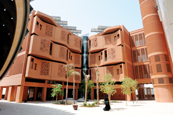 The Masdar Institute