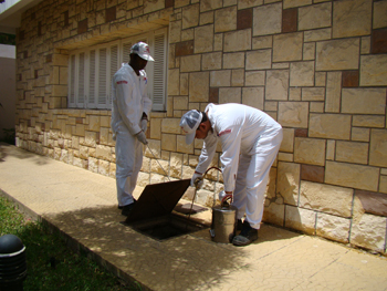 A team of Masa technicians treating outside a healthcare premises