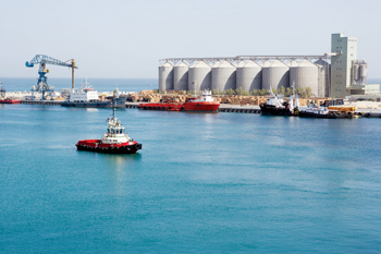 Petroleum Specialties plans to continue the launch of vital projects in the Hamriyah Free Zone