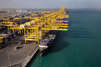 DP World: robust growth