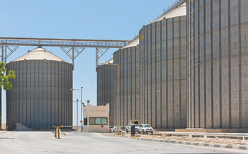 Raysut Industrial City: poised for growth